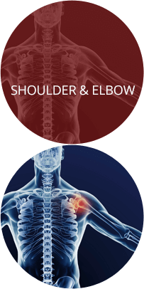 Shoulder & Elbow