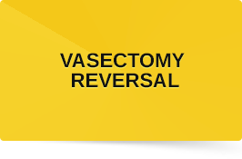 Vasectomy Reversal